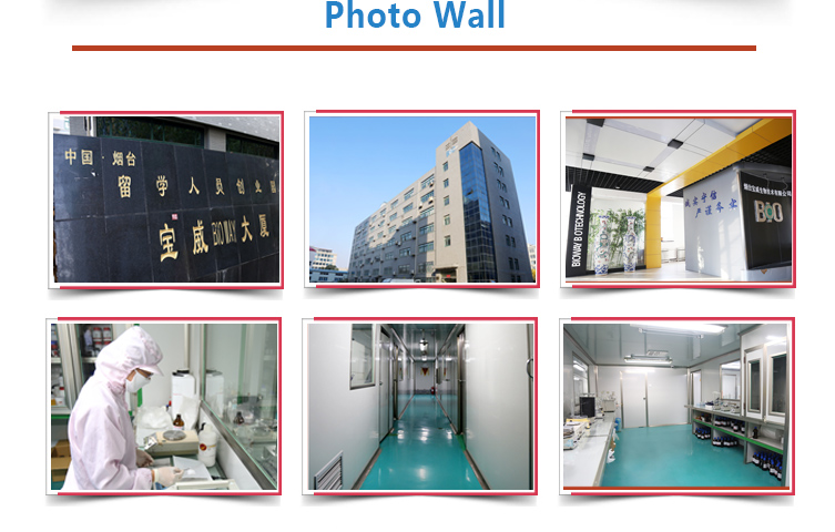 BIOWAY Photo Wall-1.jpg